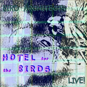 Cover Hotel for the Birds (Live)